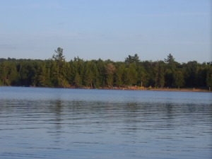 image is of a calm lake and trees on the far shore. It is peaceful and embodies freedom to me--the right to chose for oneself.